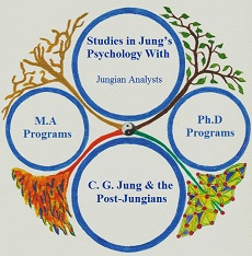 Studies in Jung's Psychology With Jungian Analysts